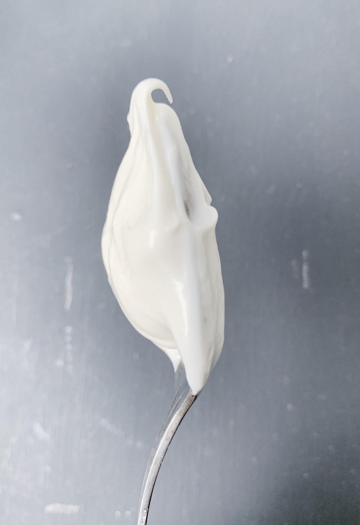 vegan-mayonnaise-recipe